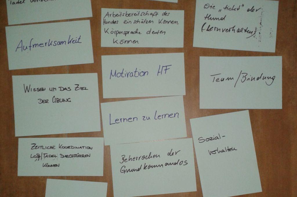 Seminare mit aktiver Beteiligung der Teilnehmer
